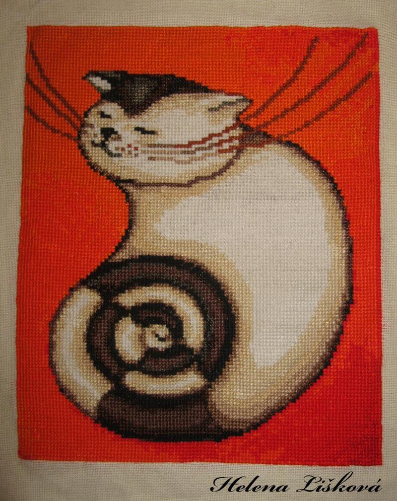 Stočené koťátko - 31.1.2011